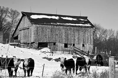 Photograph - Hereford Barn Bw by Bonfire Photography