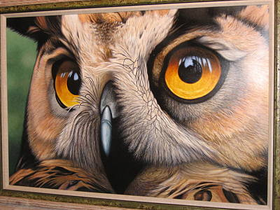 Daniel Pierce Painting - Here's Lookin' At You-owl by Daniel Pierce