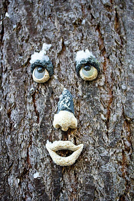 Photograph - Here's Looking At You - Funny Face by Marie Jamieson