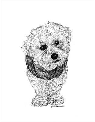 Fuzzy Drawing - Here's Nico by Jack Pumphrey