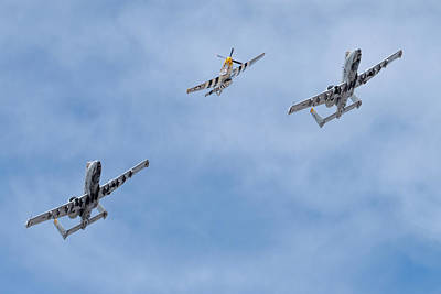 Photograph - Heritage Flight Training by Dan McManus