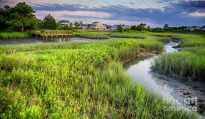 Photograph - Heritage Shores Nature Preserve by David Smith