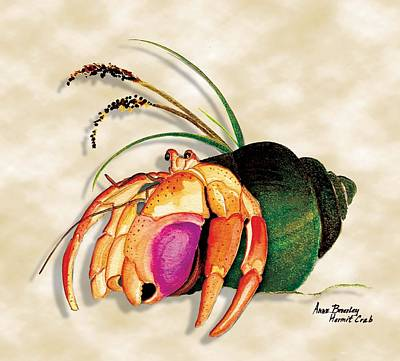 Art Print featuring the painting Hermit Crab In Green Shell by Anne Beverley-Stamps