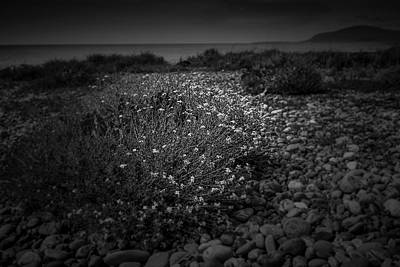 Photograph - Hernsea Bay And Black Combe by Keith Elliott