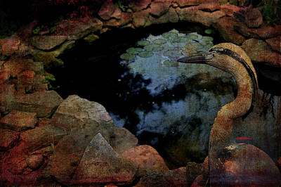 Photograph - Heron And The Koi Pond by Lesa Fine