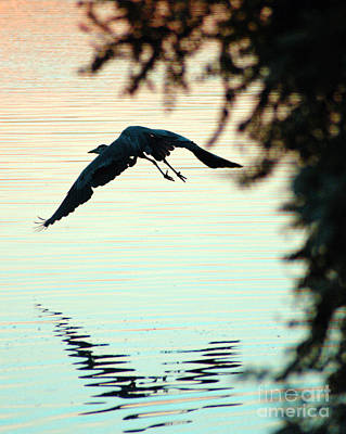 Heron At Dusk Art Print