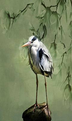Photograph - Heron Egret Bird by Movie Poster Prints