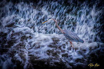 Photograph - Heron Falls by Rikk Flohr