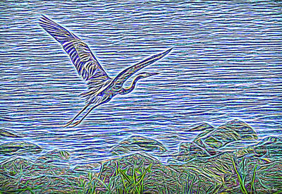 Digital Art - Heron Heavenwards by Joel Bruce Wallach