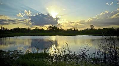 Photograph - Heron Hideout Sundown by Carol Bradley