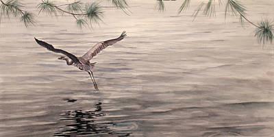 Heron In Flight Art Print by Debbie Homewood