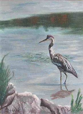 Pastel - Heron In Shallows by Ann Becker