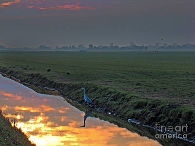 Dike Photograph - Heron In The Mist II Painting by Al Bourassa