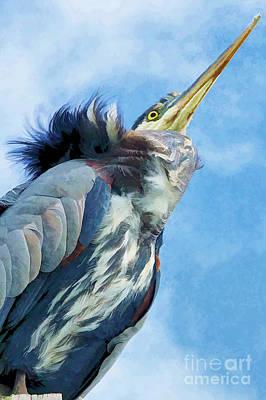 Photograph - Heron by Nancy Morgantini