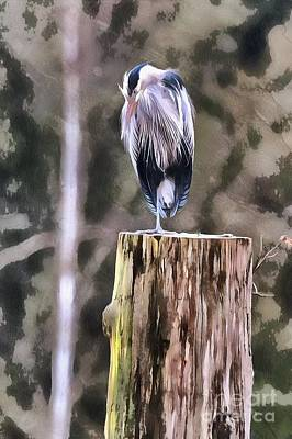 Photograph - Heron On Post by Rod Wiens