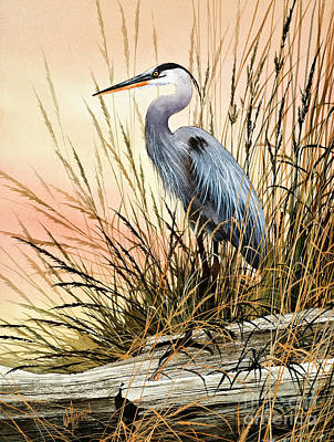 Bird Painting - Heron Sunset by James Williamson