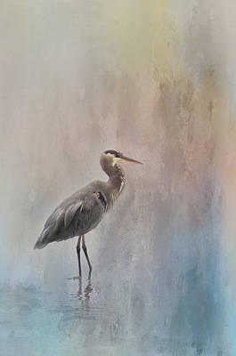 Photograph - Heron1 by Marilyn Wilson