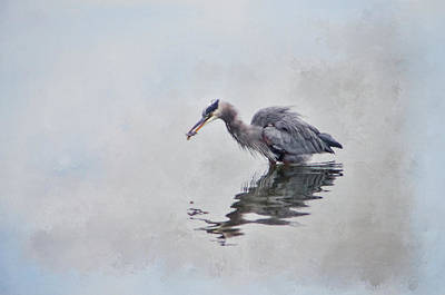 Photograph - Heron Fishing  - Textured by Marilyn Wilson