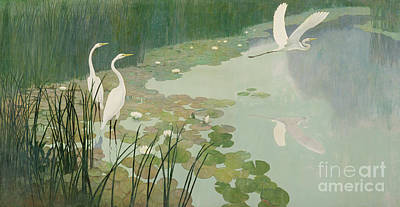 Lily Pad Painting - Herons In Summer by Newell Convers Wyeth