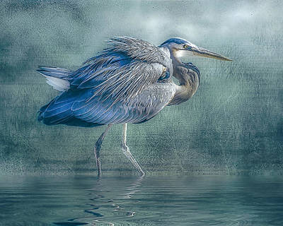 Heron's Pool Art Print