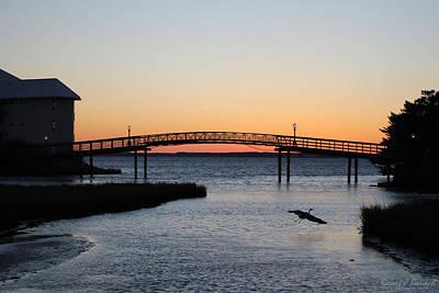 Photograph - Heron's Sunset Landing by Robert Banach