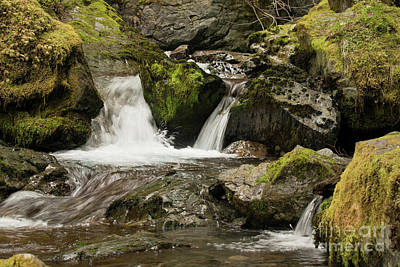 Photograph - Herring Cove Sitka Waterfall by Loriannah Hespe