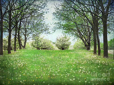 He's In The Orchard Art Print by Kathi Mirto