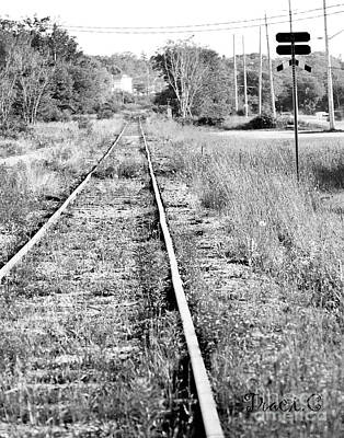 Photograph - Hespeler Tracks by Traci Cottingham
