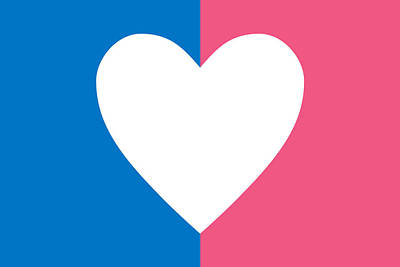 Digital Art - Heterosexual Flag by  Newwwman