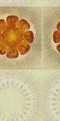 Heteroside Distribution Flower  Id 16164-210800-46150 Art Print