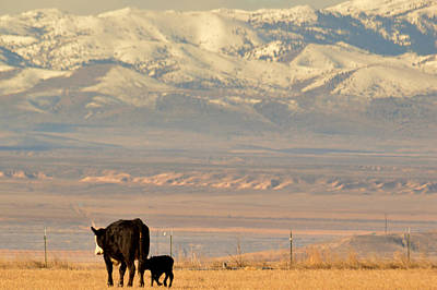 Art Print featuring the photograph Hey Mom..  Wait Up by Al Swasey
