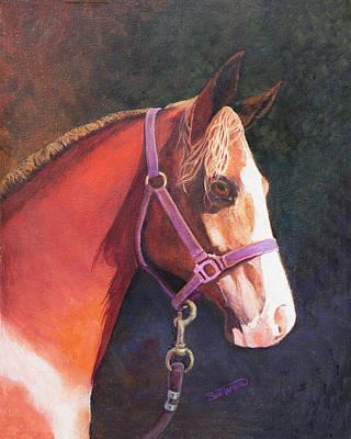 Painting - Hi C Arabian by Beverly Martin