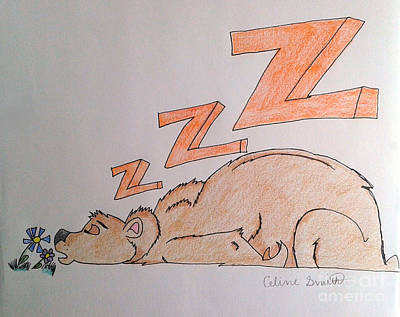 Grizzly Bear Drawing - Hibernation?  by Celine Smith