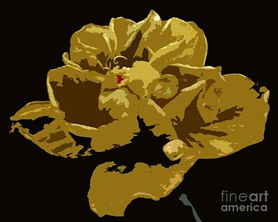 Photograph - Hibiscus 14 by Barbie Corbett-Newmin