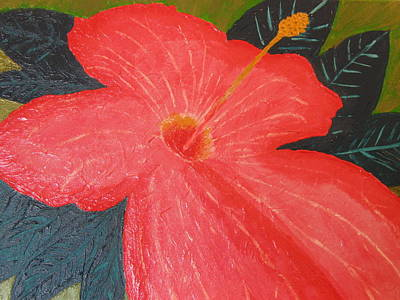 Hibiscus Art Print by Barbara Yearty