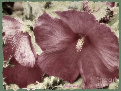 Photograph - Hibiscus Floral Series  by Bobbee Rickard
