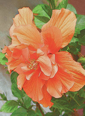 Painting - Hibiscus Flower by John Dyess