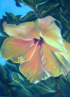 Florida Flowers Drawing - Hibiscus by Lisa Ikegami
