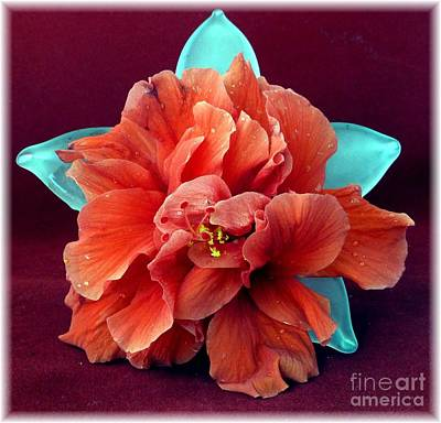 Hibiscus On Glass Art Print by Barbie Corbett-Newmin