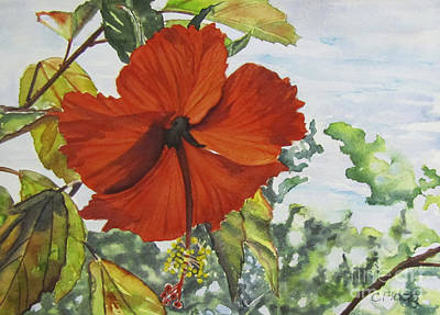 Painting - Hibiscus St Thomas by Carol Flagg