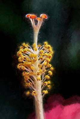 Photograph - Hibiscus Stamen Up Close by Alice Gipson