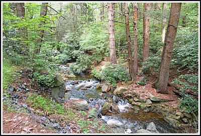 Photograph - Hickory Run Stream, Pocono Mountains, Pennsylvania by A Gurmankin