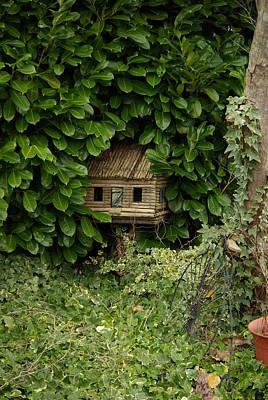 Hidden Birdhouse Art Print