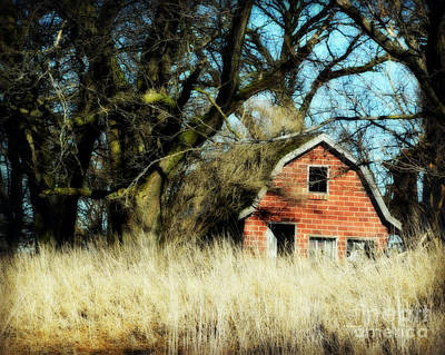 Photograph - Hidden Brick Barn by Kathy M Krause