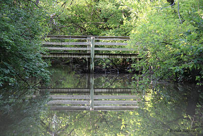 Photograph - Hidden Bridge by Brenda Redford