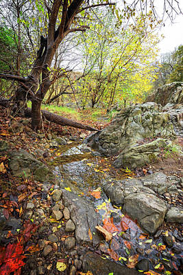 Photograph - Hidden Fall Stream by Alan Raasch
