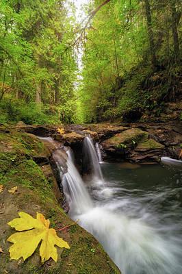 Hiking Photograph - Hidden Falls At Rock Creek by David Gn
