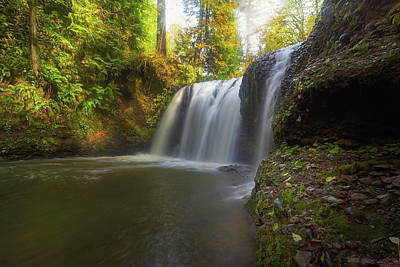 Hidden Falls In Rock Creek Art Print by David Gn