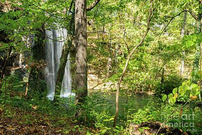 Photograph - Hidden Falls by Jennifer White