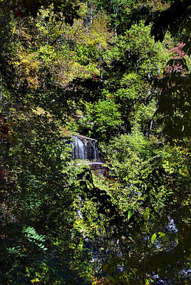 Dog And Butterfly Photograph - Hidden Falls by Skip Willits